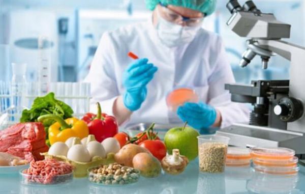 کارگروه پشتیبانی از تولیدات در صنایع غذایی تشکیل شد